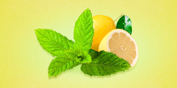 Lemon Mint concentrate