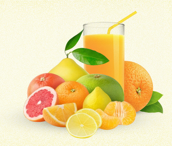 Citrus concentrate supplier