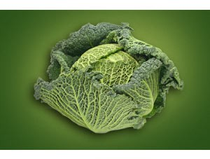 Kale Puree