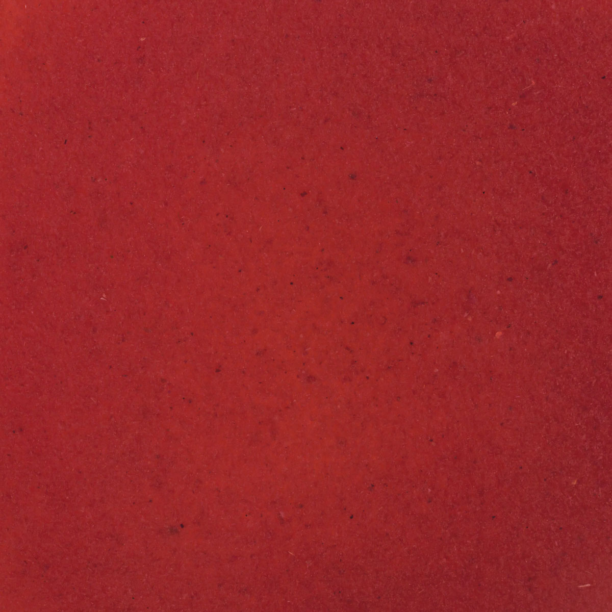 red grape pomace texture