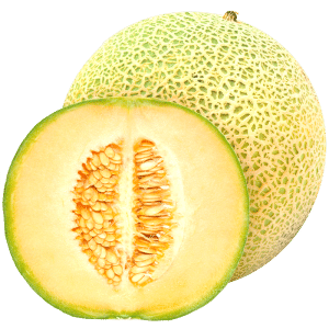 cantaloupe melon fruit concentrate