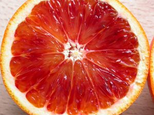 blood orange concentrate manufacturer