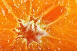 european-orange-concentrate