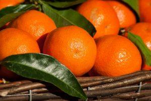 orange fruit oil