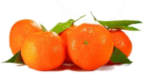 mandarin fruit products manufacturer and supplier