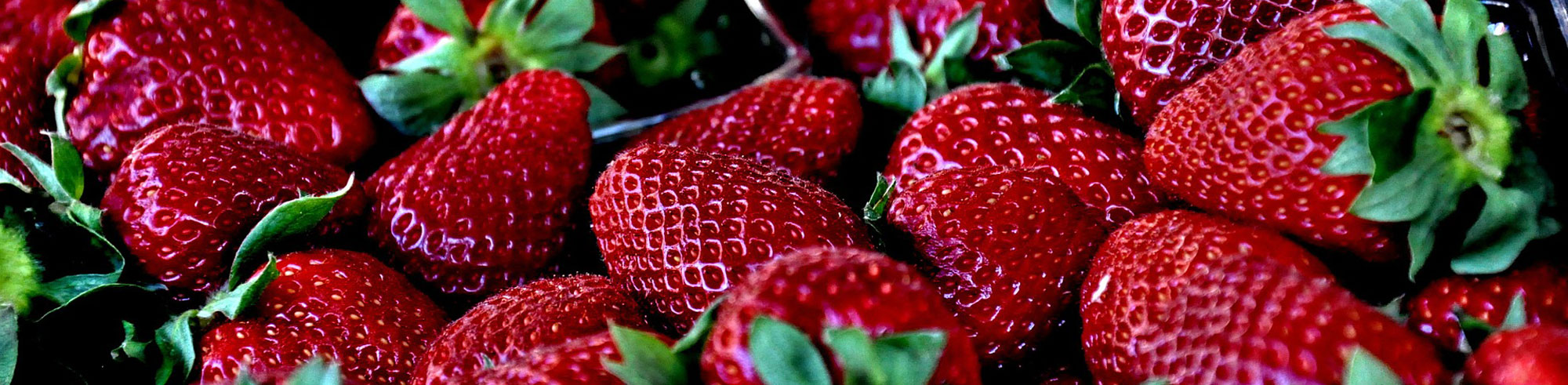 strawberry fruit products manufacturer and supplier