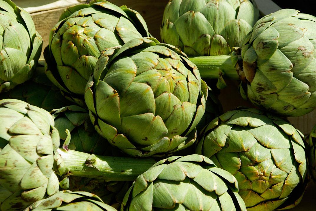 artichoke puree manufacturer