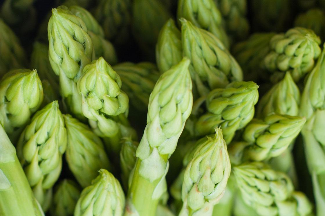 asparagus puree supplier