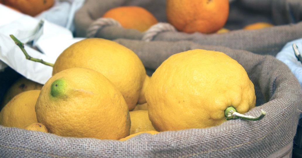 lemon filling manufacturer