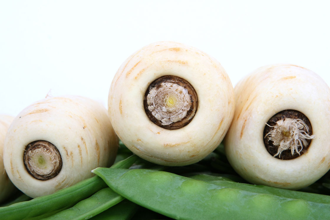 parsnip puree manufacturer
