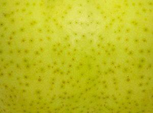 pear texture