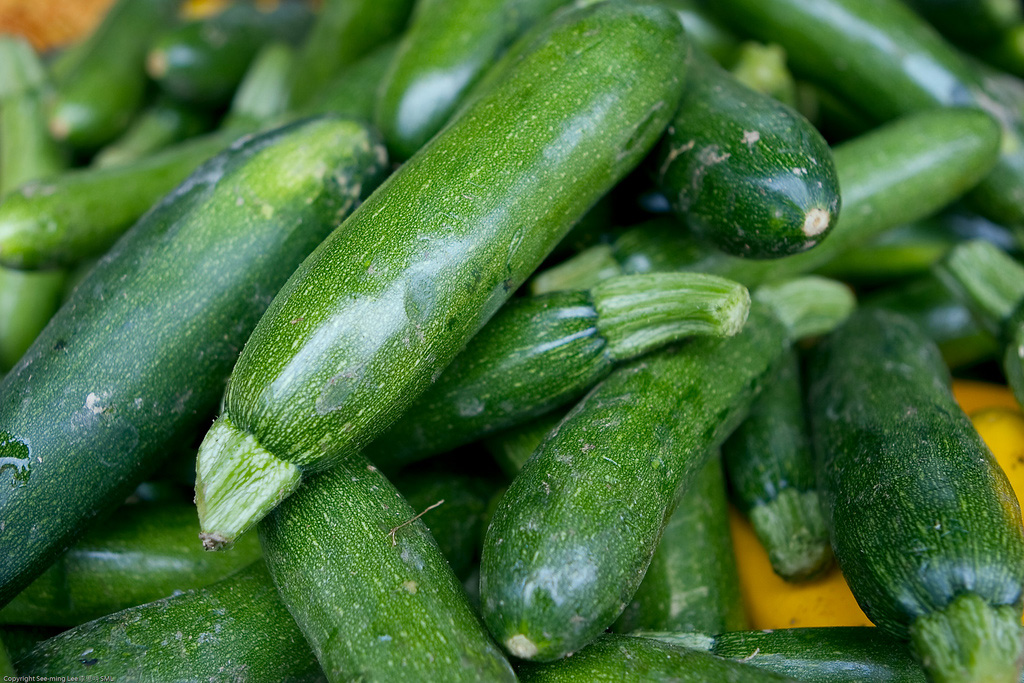 zucchini-puree