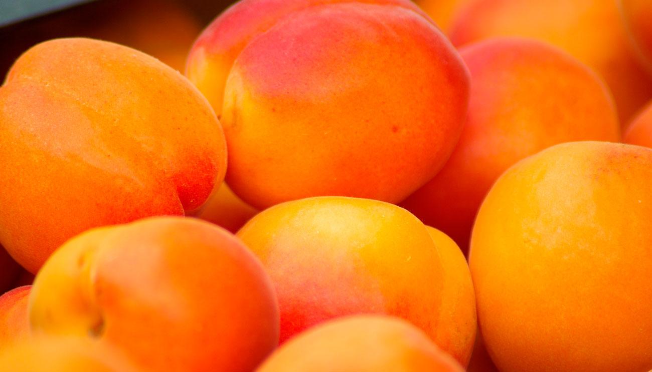 peach-puree-concentrate