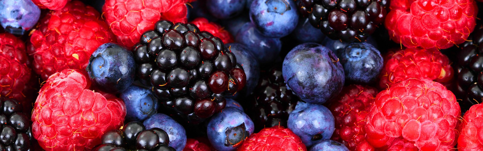 berry fruit products