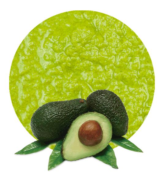 Avocado Puree - Manufacturer and Supplier   LemonConcentrate